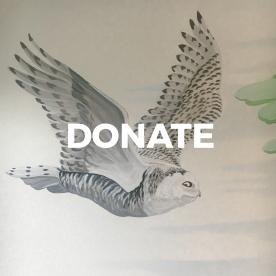 DONATE HELP
